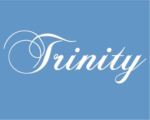 トリニティ不動産販売株式会社の写真