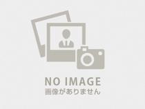 下村 (しもむら)